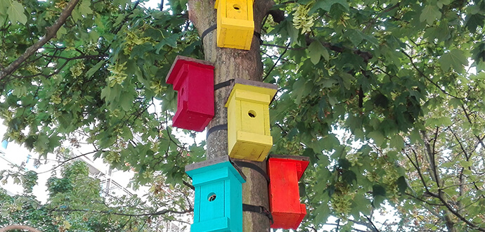 Anke Odrig Little Bird GmbH IT Unternehmen